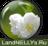landnellys_landnellys.ru