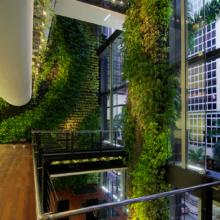 Висячие Сады. Сингапур