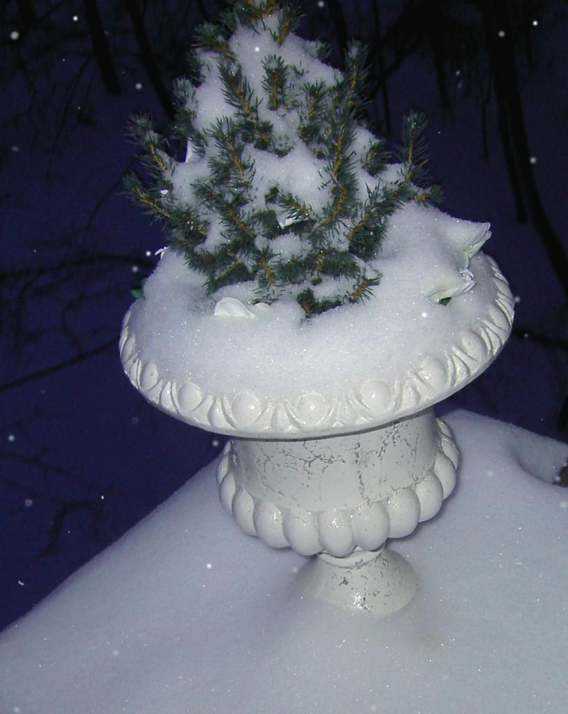 спасибо мороз что снегу нанес