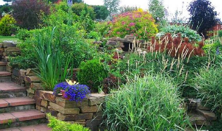 Пейзажные сады
