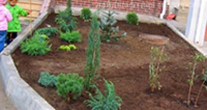 Садик в таунхаусе посадка растений